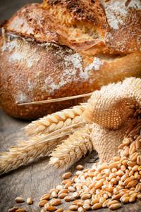 Brot Stilleben